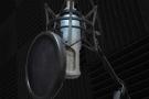 LDC Vocal Mic